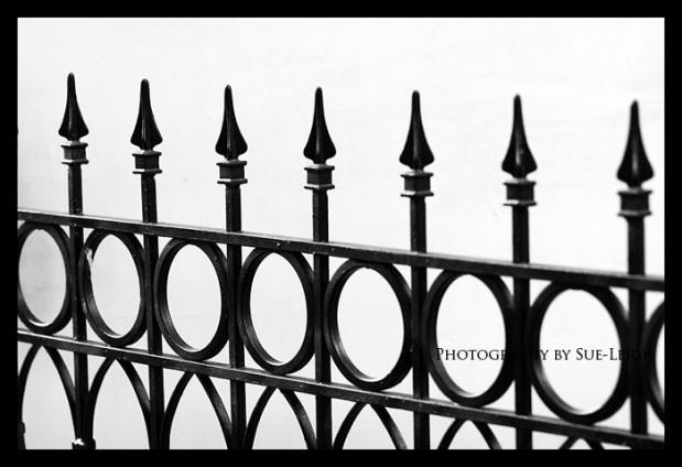 fence.jpg