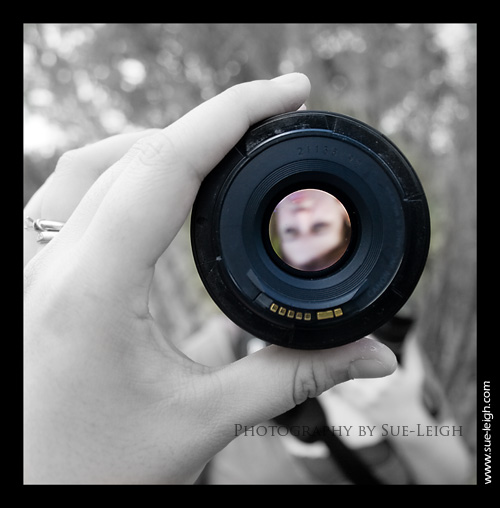 thru-the-lens.jpg