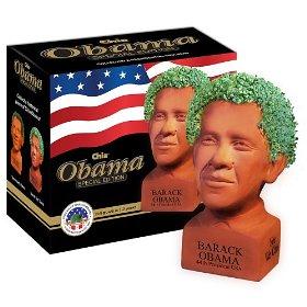 chia obama